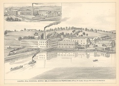 Laurel Hill Chemical Works, 1883. Parts of Queens were becoming industrial suburbs