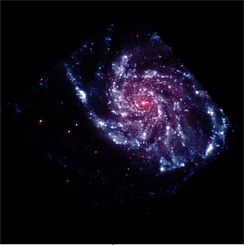 "This artificially colored view of M101 maps ultraviolet light as blue while visible light is red since UV light does not have a ""color"" (the eye stopping at about violet). This view was taken by the Explorer Swift, which can also detect X-Rays, and has contributed to the study of Gamma-ray bursts and other topics"