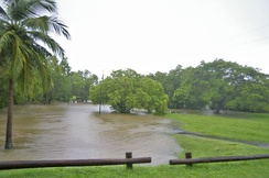 Flooding of a creek due to heavy monsoonal rain and high tide in Darwin, Northern Territory, Australia.