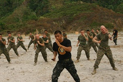 "A Philippine Marine Corps instructor teaches US Marines ""Pekiti-Tirsia Kali"", a Philippine martial art during military exercises"