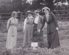 Marsh is shown here planting a tree at Eagle House witnessed by Annie Kenney, Mary Blathwayt and Laura Ainsworth