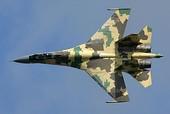 Sukhoi Su-35S in 2009 (2).jpg