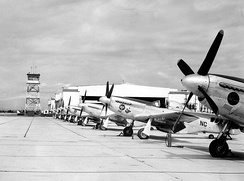 F-51 Mustangs of the 140th Fighter-Bomber Group
