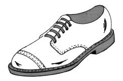 This male dress shoe, known as a derby shoe, is distinguished by its open lacing.