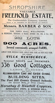A 1910 letterpress poster, advertising an auction, using a variety of fonts