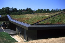 Green roof planted with native species at L'Historial de la Vendée, a new museum in western France