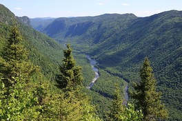 View of Jacques-Cartier River from Andante mountain