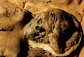The Skrydstrup Woman was unearthed from a grave mound in Denmark.