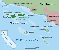 The northern four Channel Islands of California are shown here in dark green