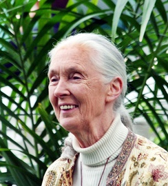 Tournament of Roses Parade Grand Marshal Dr. Jane Goodall, 11th female Grand Marshal, at Tournament House, 2012