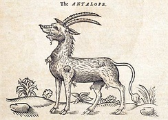 Illustration from The History of Four-footed Beasts (1607).