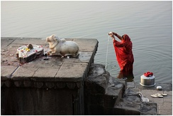 Shaiva icons and a Hindu woman praying in River Narmada, Maheshwar, Madhya Pradesh.