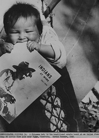 Chippewa baby waits on a cradleboard while parents tend rice crops (Minnesota, 1940).