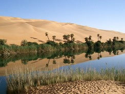 An oasis is an isolated water source with vegetation in a desert.