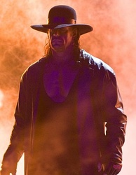 The Undertaker is a five-time winner of the category