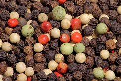 "Black, green, pink, and white peppercorns. In terms of spice trade, the VOC was an early pioneering model of the global supply chain in its modern sense.[9] Dutch word ""peperduur"" – which literally translated as ""pepper expensive"" or ""as expensive as pepper"" – is an expression for something that is very costly."