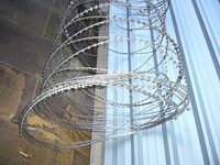 Short barb razor wire with central reinforcement