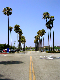 Del Amo Fashion Center, one of the largest malls in the United States