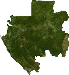 Satellite image of Gabon.