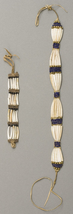 Plateau dentalium choker and bracelet, from Nez Perce National Historical Park, 19th century, made using Antalis pretiosum shells
