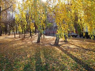 15 Line Luhansk.jpg