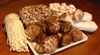 A selection of edible mushrooms eaten in Asia