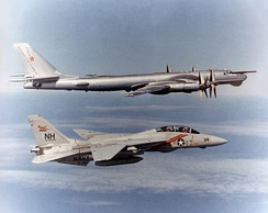 "An F-14A from VF-114 intercepting a Soviet Tu-95RT ""Bear-D"" maritime reconnaissance aircraft."