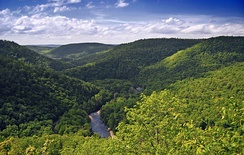 World's End State Park, Sullivan County
