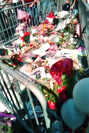 The floor on an area on the ground is covered with flowers, cards and balloons. The area is closed off with metal barricades.