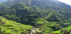 Banaue Rice Terraces in Luzon, Philippines