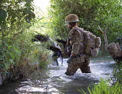 A Royal Air Force Police Dog Handler attached to 42 Commando, on patrol in Helmand Province, Afghanistan (2011)
