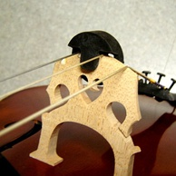 A rubber two-hole Tourte mute on the bridge of a cello
