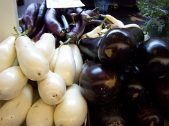 Three cultivars of eggplant, showing size, shape, and color differences