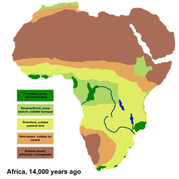 African vegetation during the last glacial maximum