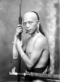 A Dayak with earrings and a lance (taken c. 1920, Dutch Borneo). The Dayaks are previously reputed to be headhunters by the Europeans. In the first half of the 19th century, the Dutch Colonial government in Eastern and Southern Borneo successfully curtailed the traditional headhunting culture by the Dayaks. In reality not all Dayaks were Hunter-gatherers, most Dayaks in the 19th century are actually farmers, mainly engaging with shifting cultivation. They also gathered forest goods and animal hunting.
