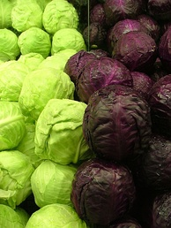 Green and purple cabbages