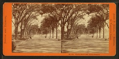 View of Boston, c. 1860; an early stereoscopic card for viewing a scene from nature
