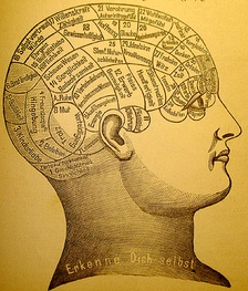 A phrenological mapping[1] of the brain. Phrenology was among the first attempts to correlate mental functions with specific parts of the Brain