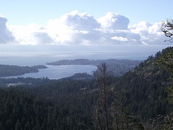 Sooke Basin View - panoramio.jpg