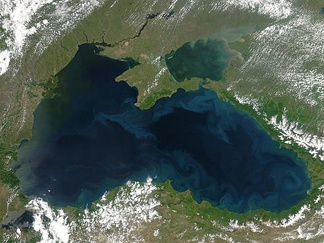 Phytoplankton blooms and plumes of sediment form the bright blue swirls that ring the Black Sea in this 2004 image