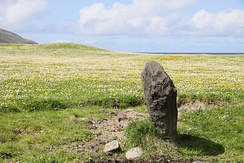 Standing stone at Borve