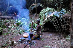 Pygmy hunter-gatherers in the Congo Basin in 2014