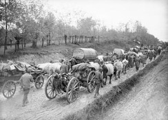 The retreat of the Serbian army at the end of October 1915 from Northern to Southern Serbia.