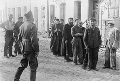 Polish Jews are lined up by German soldiers to do forced labour, September 1939, Nazi-occupied Poland