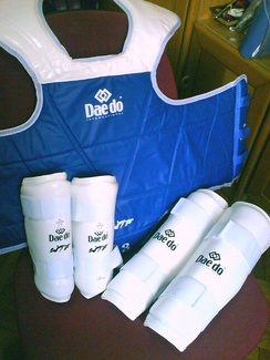 Official WT trunk protector (hogu), forearm guards and shin guards