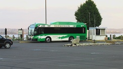 Hybrid electric bus operated by Transport of Rockland