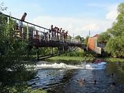 Живой мост через Трубеж