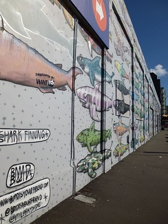 A mural protesting shark finning in Wellington, New Zealand