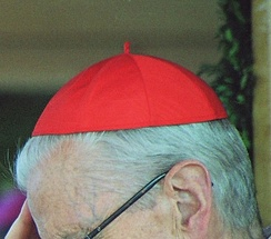 Cardinal Franciszek Macharski with a scarlet zucchetto