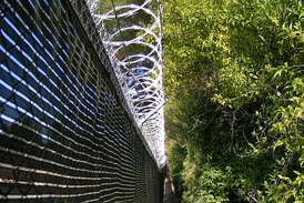 Razor wire—long-barb type on top of a chain link privacy-fence surrounding a utility power sub-station